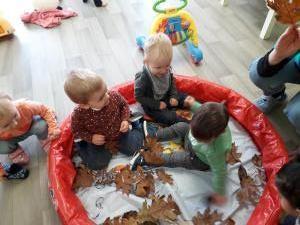 Herfst bij de 1-2 jarigen-3